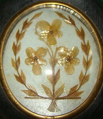 Antique Mourning Hair Wall Piece Glass Wood Cadre Superb Hairwork About 1850 See