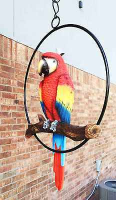 Bird Parrot Art Statue Garden Hanging Branch Decor Outdoor Tropical Patio Porch