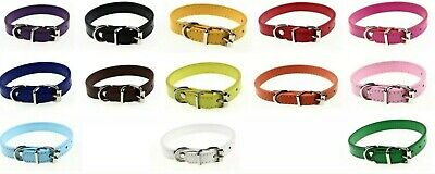Brand new Faux Leather Dog Cat Puppy Collar 8 colors small medium size