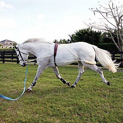 Pessoa Lunging System - Color:None Size:Horse