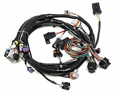 Holley 558-102 LS1 Main Harness