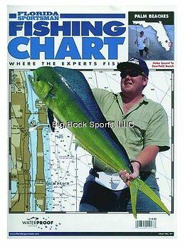 Florida C07WPB Fish Chart Palm