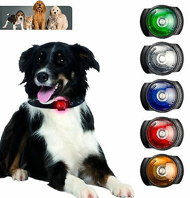 Orbiloc Dog Safety Light Clips Onto Your Dogs Collar For Night, Pet Safety