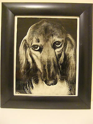 Saluki Dog Illustrated in Candle Smoke, Unique hand drawn work and a 'One Off'