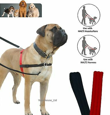 CoA Halti Dog Training Leads Red or Black Various Sizes - Free Fast P&P
