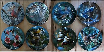 BIRDS OF YOUR GARDEN, Kevin Daniel, Collection Set of 8 Knowles Plates, COA