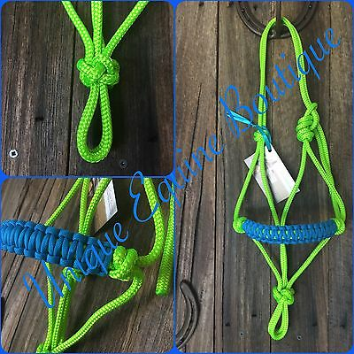 BNWT Mini Pony Size Rope Halter Lime Green ~ Blue ~ Horse Gear Tack Horsemanship