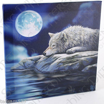 ' Quiet Reflections Wolf Canvas '   -  By Lisa Parker  -  Framed On Wood  -  Bn