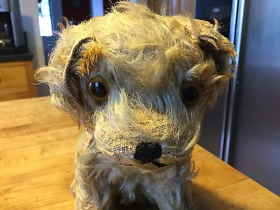 """Antique Steiff Molly Dog Large 9"""" Size No Id Well-Loved Condition So Cute!"""