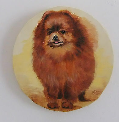 """POMERANIAN DOG. ORIGINAL PAINTING - on 10"""" round canvas. By R.J.Cail"""