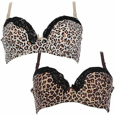 New Ladies Underwired Floral Everyday Lingerie Leopard C Cup Size Bra 38C-44C