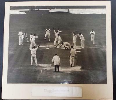 Large Vintage Ex Exhibition Cricket Photo Last Ball The Oval 1968 Dennis Oulds
