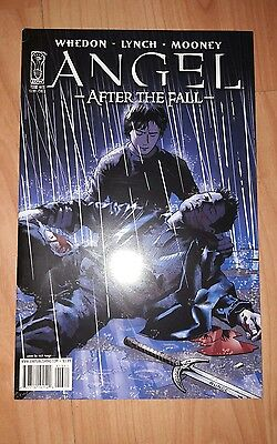 Angel After the Fall comic #13 cover B