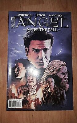Angel After the Fall comic #14 cover B