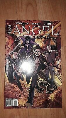 Angel After the Fall comic #15 cover B