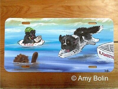NEWFOUNDLAND aluminum LICENSE PLATE Amy Bolin WATER RESCUE 101 PERSONALIZE IT