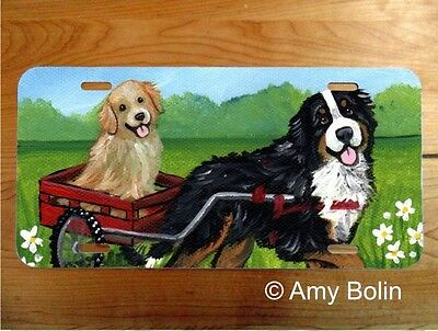 Bernese Mt dog,Golden aluminum LICENSE PLATE Amy Bolin Traveling PERSONALIZE IT