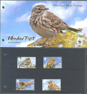 Alderney -Meadow Pipit-Birds - WWF issue mnh(15.2.2017)Presentation Pack