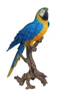 Large Macaw Parrot Ornament