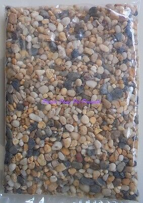 ~Aquarium Natural Coarse Gravel 1Kg Bags~