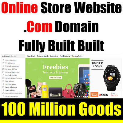Website - eCommerce Store - .Com Domain - For Sale - Home Online Based Business