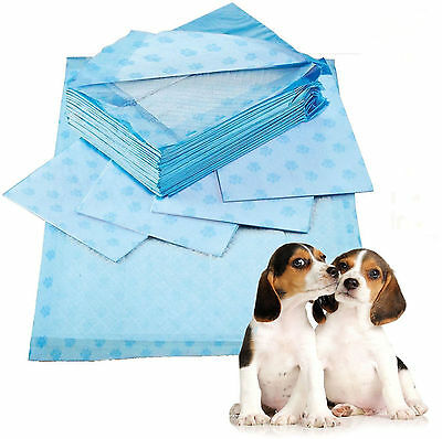 Large 60x60cm Scented Puppy Trainer Training Pads Toilet Wee Super Absorbent