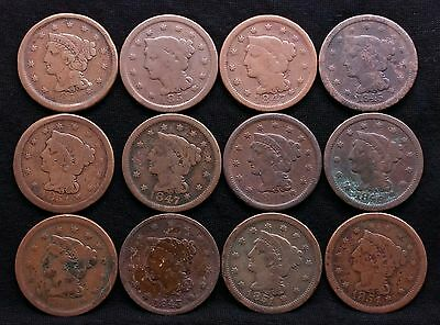 Lot Of 12 Large Cent Penny Us Coin Lot Assorted Dates