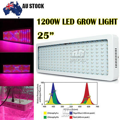 600W 200 LED Grow Light Panel Full Spectrum Lamp Kit IR UV Indoor Veg Hydroponic