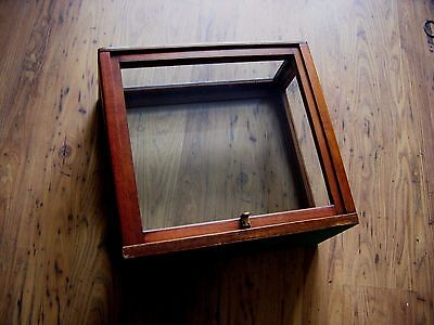 vintage glass wooden display case taxidermy brass scales etc
