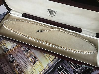 Vintage 14Ct Gold Saltwater Akoya Pearl Graduated 20 In Necklace Boxed - 817