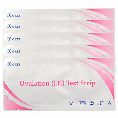 5pcs Ovulation Fertility Test Strips Early Pregnancy Test Clear Result Kit*`