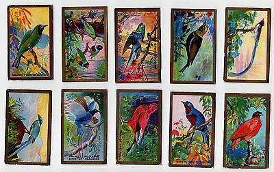 1926 CAVANDERS LTD FOREIGN BIRDS(25 CARDS)(used,good)