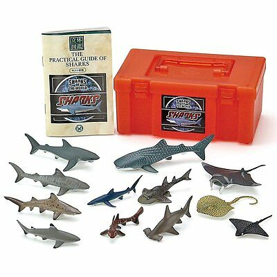 Sharks of the world / Real Figure Box Set / Figure: 12 species 12