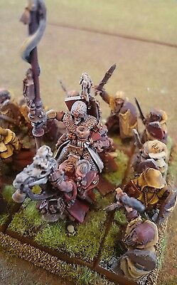 Warhammer Fantasy AOS Bretonnian Army well painted with trays #4