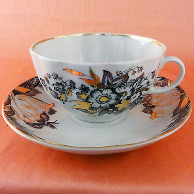 Lomonosov REFLECTIONS CUP & SAUCER NEW NEVER USED Russian Porcelain