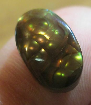 MEXICAN Fire Agate Free Form All Natural  Gemstone Multi-colored 8x14....