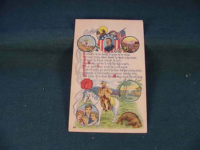 1908 President Teddy Theodore Roosevelt Third Term Campaign Poltical Postcard