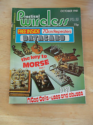 PRACTICAL WIRELESS OCTOBER 1981 THE KEY TO MORSE (I) NiCAD CELLS - USES & ABUSES