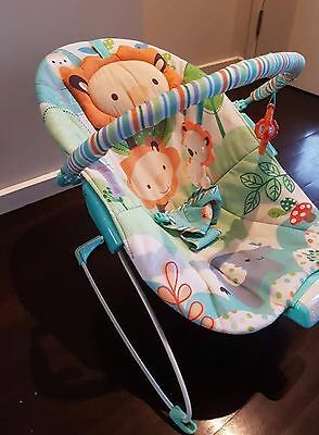 Bright Starts Zoo Bouncer Bassinet