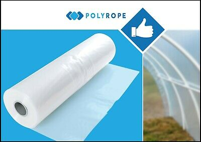 POLYTUNNEL 6mx10 meters CLEAR POLYTHENE SHEETING GREENHOUSE FOIL MEMBRANE