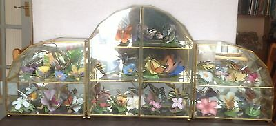 Franklin Mint Butterflies by Brian Hargreaves