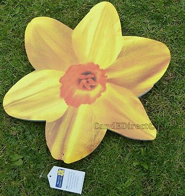 Large Marie Curie Daffodil Shaped Garden Knee Kneel Kneeler Pad Cushion NEW