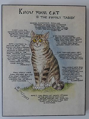 Vintage Know Your Cat The Family Tabby By Dick Twinney Wall Plaque