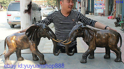 "27"" Large Chinese Fengshui Copper Bronze Africa Elephant Heffalump Pair Statue"