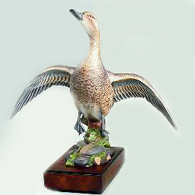 Pintail Female Hen Royal Worcester RW3834 NEW NEVER SOLD with plinth England