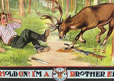 Elks Fraternal Org.Comic Postcard~Elk Attacks Hunter~Gun Knife~Artist Signed