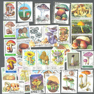 Fungi-Mushrooms 100 all different stamp collection