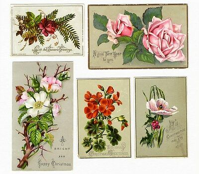 RAPHAEL TUCK 5 NEW YEAR and CHRISTMAS Greeting Cards 1880s Victorian Era Flowers