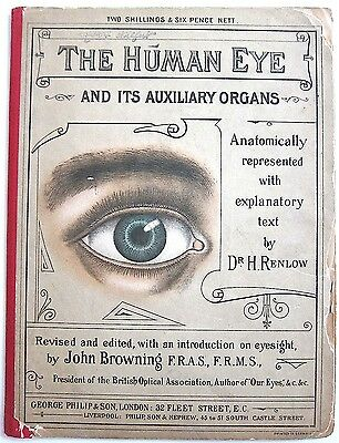 The Human Eye & Its Auxiliary Organs~1896~Renlow/Browning~Rare
