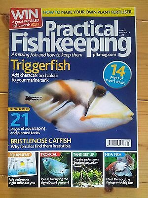 PRACTICAL FISHKEEPING  issue 02    2013